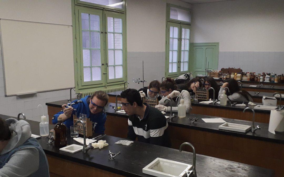 La semana pasada tuvimos la segunda sesión de prácticas de laboratorio